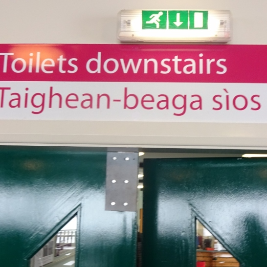"""The sign in question. I would assume """"tigh beag"""" or whatever the nominative singular would be literally means """"little house""""."""