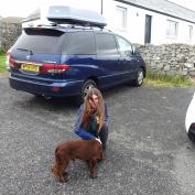 Vesper pets a dog outside the restaurant